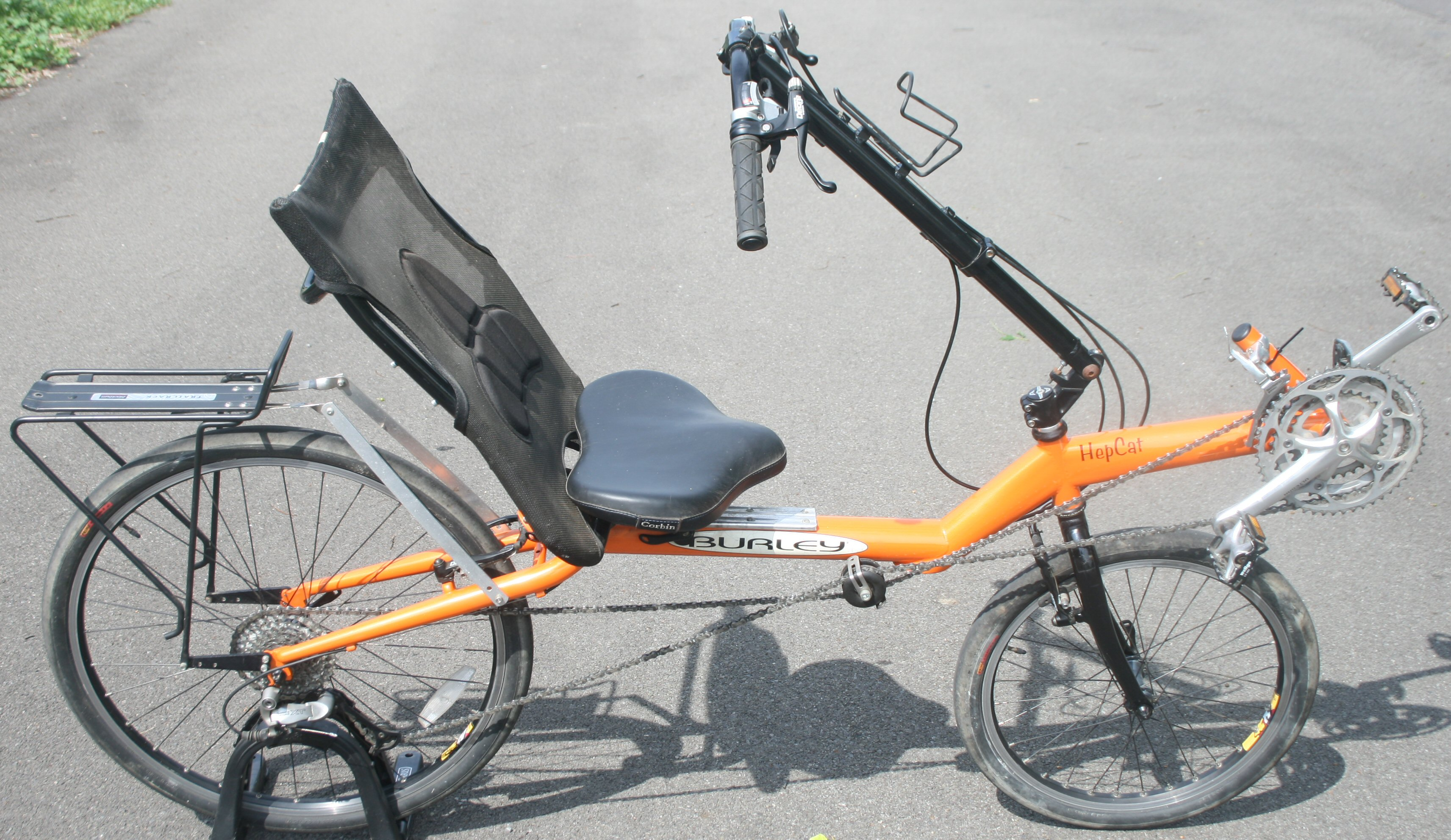 Orange HepCat