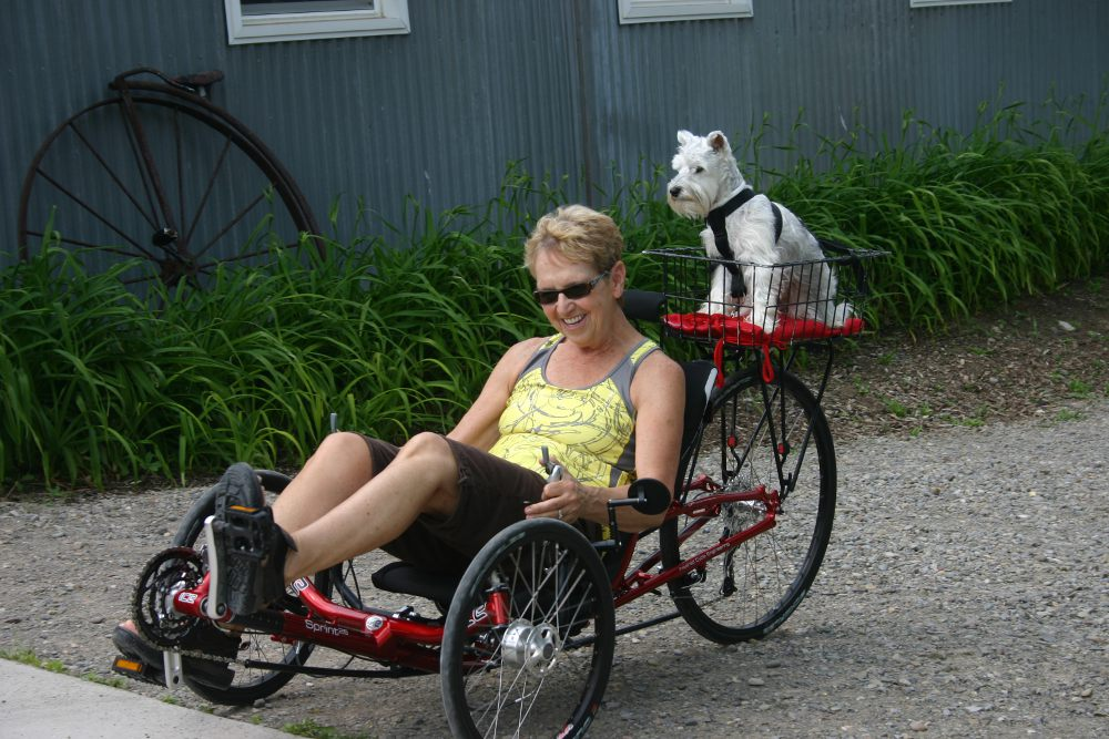 Biking with your pets
